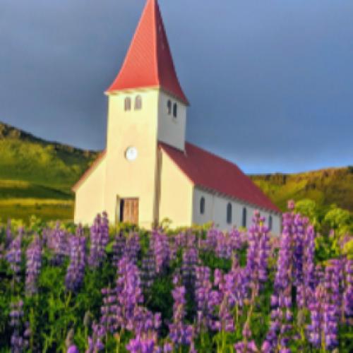예수뿐인교회